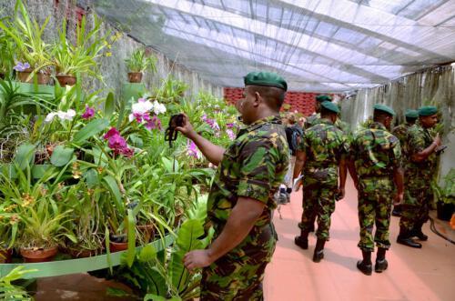 ii Military Fun
