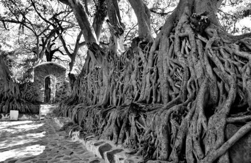 j Ancient Sanctuary